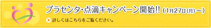 プラセンタ・点滴キャンペーン